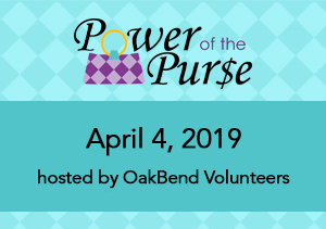 Power of the Purse 2019